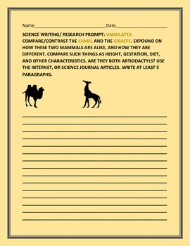 SCIENCE WRITING/ RESEARCH PROMPT: UNGULATES: CAMEL & GIRAFFE