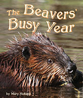 The Beavers' Busy Year (ebook)