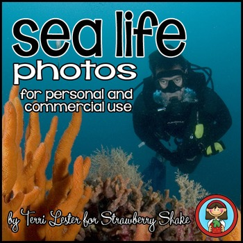 Photos Photographs SEA LIFE! Science and Nature for Person