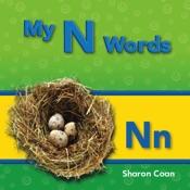 My N Words