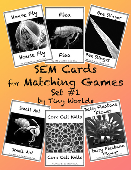 SEM Image Matching Cards - Set #1