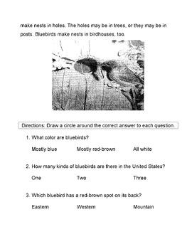 SPRING BIRDS: Bluebirds Informational text + 10 LITERAL CO