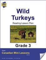 Wild Turkeys Reading Lesson Gr. 3