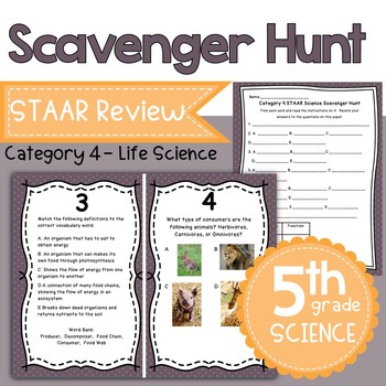 STAAR 5th Grade Science Category 4 Review Scavenger Hunt