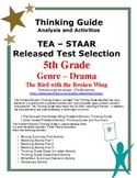 STAAR Release Analysis & Activities: The Bird with a Broke
