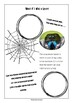 STEAM Biomimicry for Young Children - Spooky Spiders
