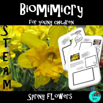 STEM - Biomimicry for Young Children - Spring Flowers