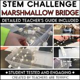 STEM Engineering Challenge: Bridges with Marshmallows