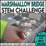 STEM Activity Challenge: Bridges with Marshmallows