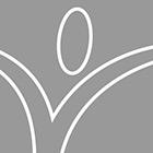 STEM Christmas Challenge: Elf Stuck on a Shelf Sledding Adventure