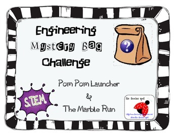 S.T.E.M. Mystery Bag Challenge!