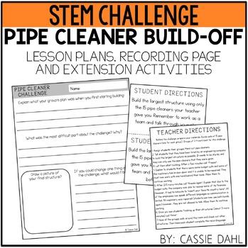 STEM Pipe Cleaner Challenge
