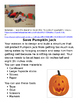 STEM lesson for a Pumpkin Unit