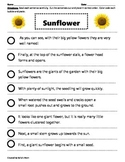 Paragraph Cut & Paste: SUNFLOWER