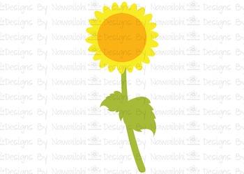 SVG, DXF, Pdf, Studio3 Cut file CF40 Fall Harvest Sunflower