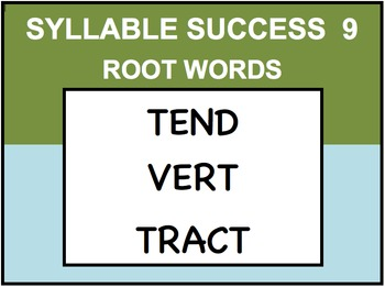 SYLLABLE SUCCESS 9  -PREFIXES, SUFFIXES, ROOT WORDS