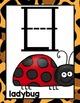 Safari-Jungle Themed Alphabet and Number Line - Zaner Blos