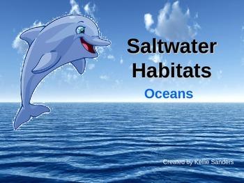 Saltwater Habitat