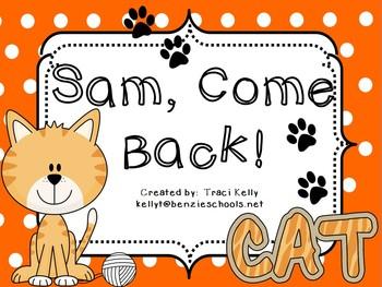 Sam, Come Back! Homework - Scott Foresman