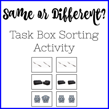 Same or Different? Task Box Sorting Activity