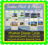 Savanna Safari Museum Display Cards