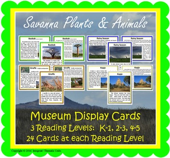 Savanna Safari Museum Display Cards