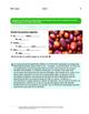 Ecology: The Amazon basin / Potatoes - 2 thematic units -