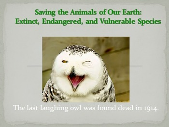 Saving the Animals of Our Earth: Extinct and endangered an