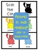 Language Experience! Scat the Cat Story