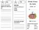 Schools Around the World Trifold - Storytown 3rd Grade Uni