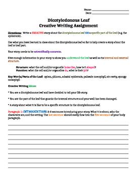 Science Creative Writing Task