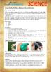 Science Experiment (41 of 50) - Balloon Sandbag - Grades 1,2,3