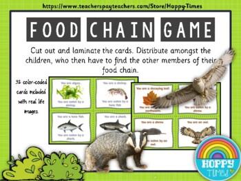 Science FOOD CHAIN / PREDATOR PREY Game  Activity