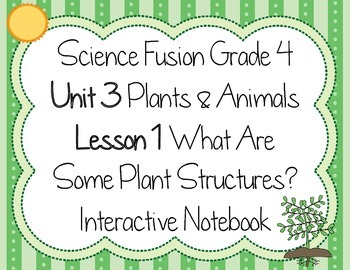 Science Fusion - Grade 4 - What Are Some Plant Structures?