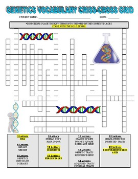Science Genetics Work (Article, Punnett Square, Vocabulary