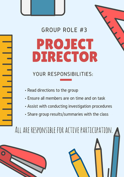 Science Group Role and Tasks - Project Director