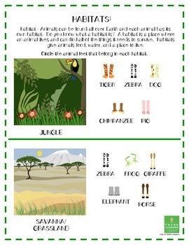 Science - Habitats, Characteristics and Adaptations All Ki
