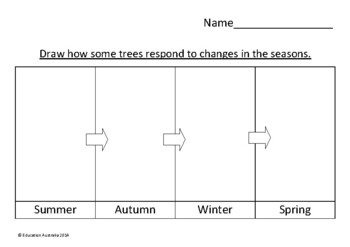 Science - How Trees Respond to the Seasons - Kindergarten