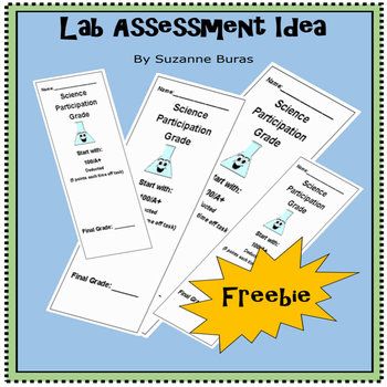 Science Lab Assessment Idea