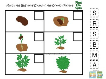 Science Life Cycle of a Plant Beginning Sounds preschool h
