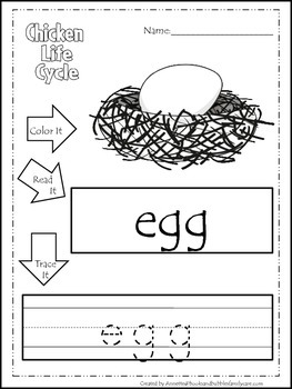 Science Life Cycle of a Chicken Color,Read,Trace preschool