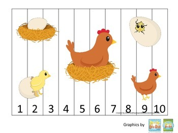 Science Life Cycle of a Chicken Number Sequence Puzzle 1-1