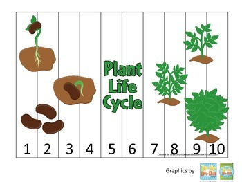 Science Life Cycle of a Plant Number Sequence Puzzle 1-10
