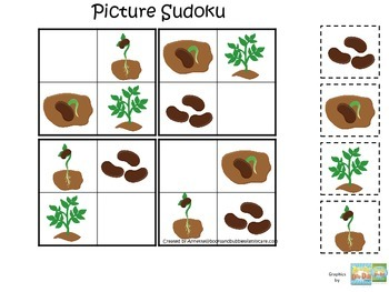Science Life Cycle of a Plant Picture Sudoku preschool hom