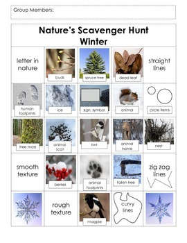 Science- Nature Walk, Winter (Field Trip)