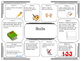 Science Project Choice Board: Soils and Soil Profiles- 10