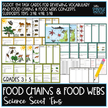 Food Chains & Food Webs: Science Scoot 'ems