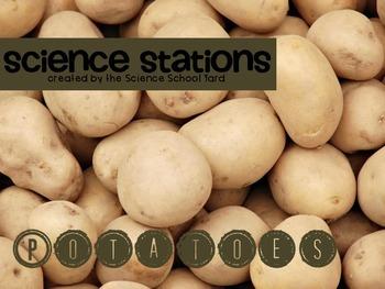 Science Stations: Potato Plants