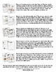 Science Themed Activity Set / Worksheets + Flashcards