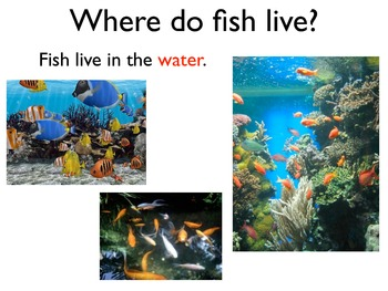 Science Unit: Fish with Workbook